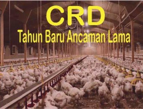 CRD, Tahun Baru Ancaman Lama
